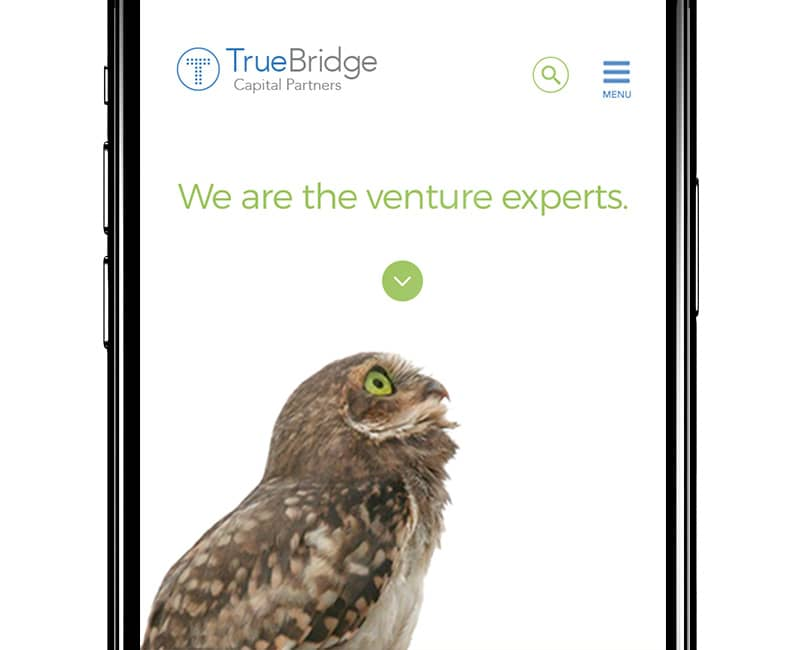 TrueBridge Capital